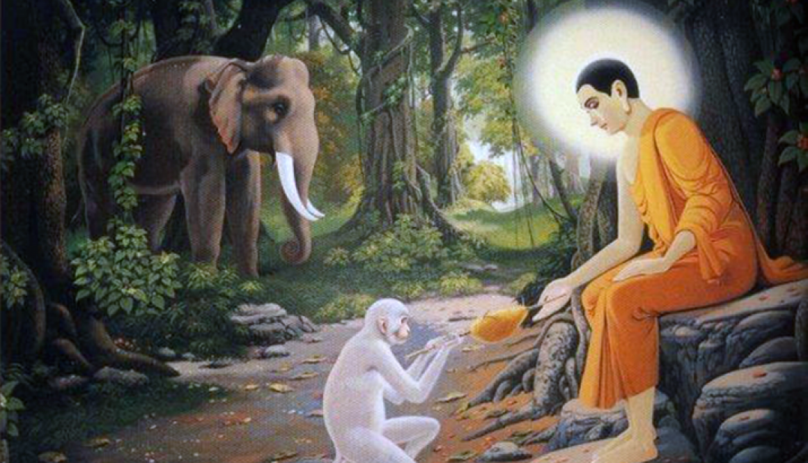 Animal rights in Buddhism