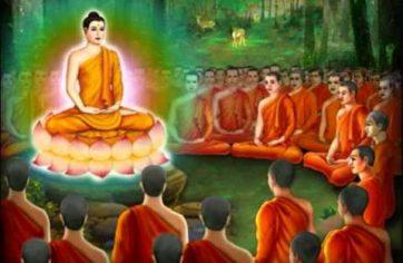 BUDDHA DHAMMA:  Liberty, equality, fraternity and Buddhism