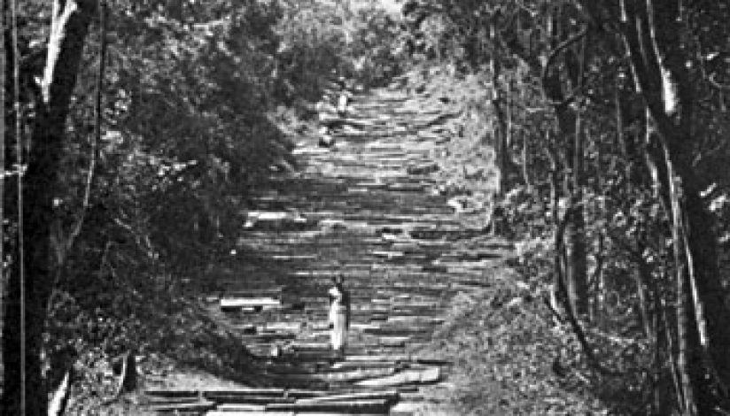 THE ANCIENT STAIRWAY